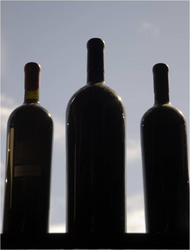 proper wine storage conditions